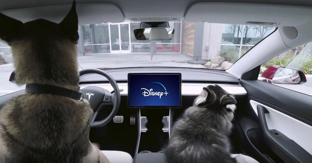 Disney plus tesla